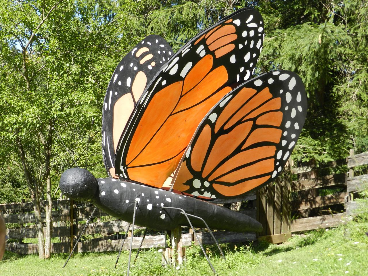 Papillons d'Amarande (à 37km)