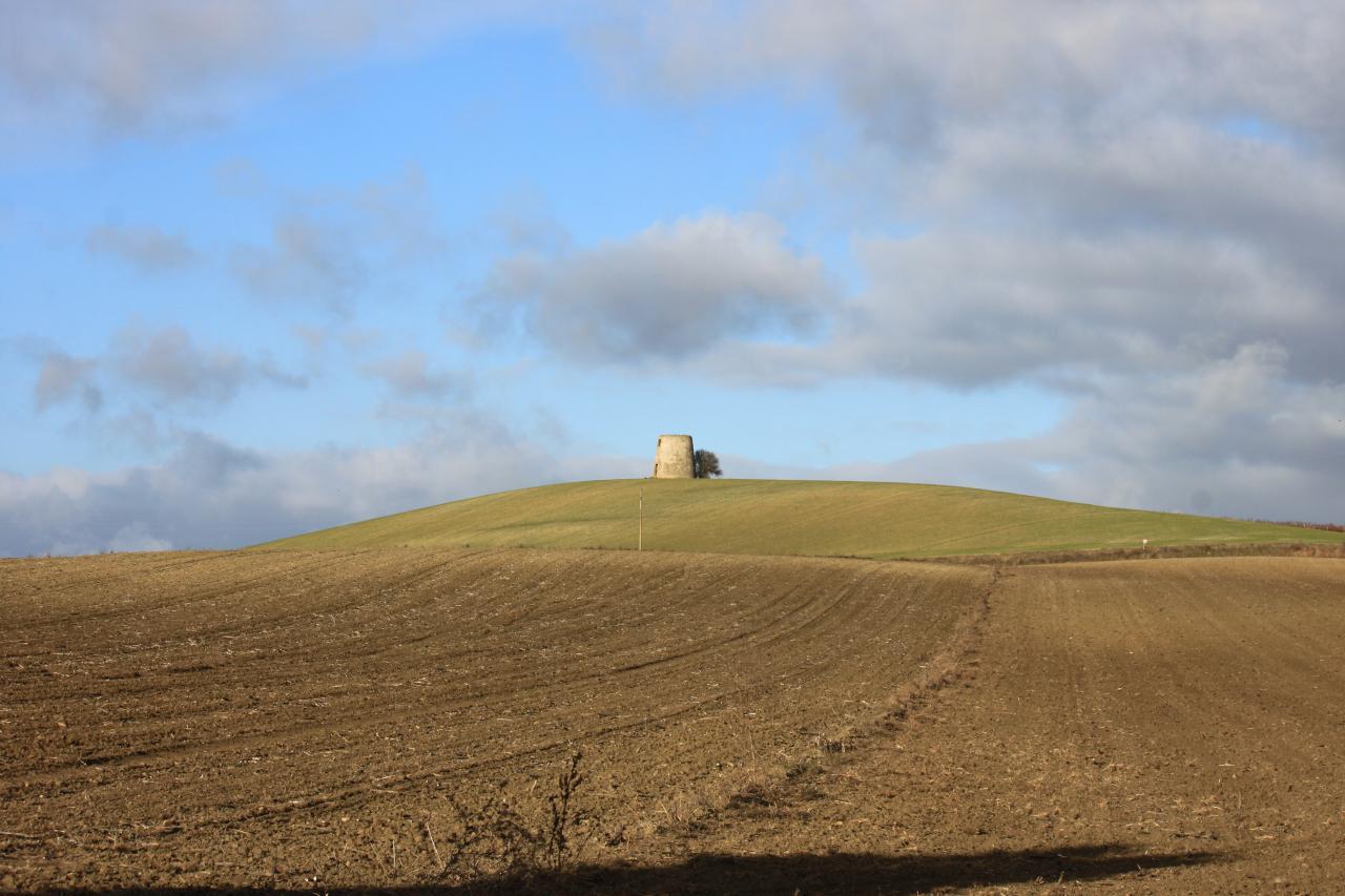 La tour de Ferran (à 16km)